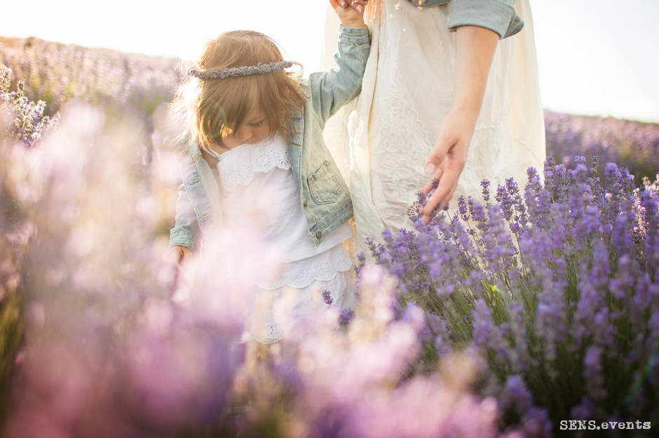 Sens_events_family_Lavender_tenderness_002