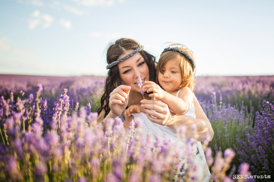Sens_events_family_Lavender_tenderness_010