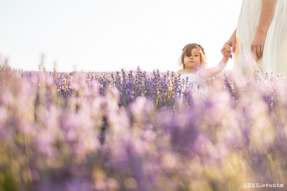 Sens_events_family_Lavender_tenderness_020