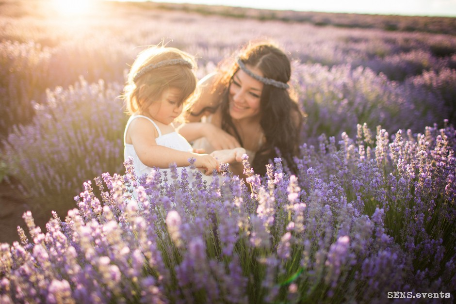 Sens_events_family_Lavender_tenderness_022