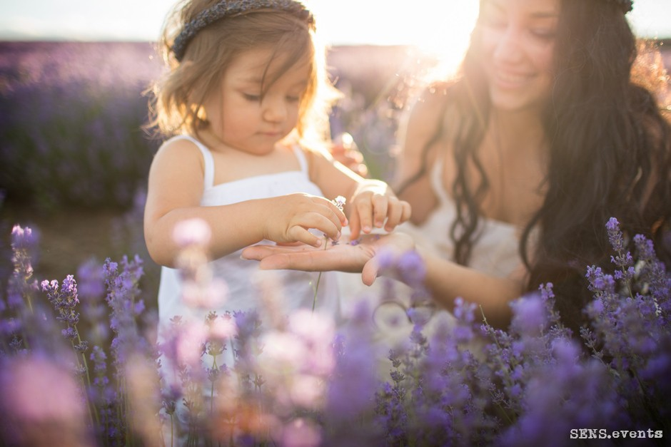 Sens_events_family_Lavender_tenderness_027
