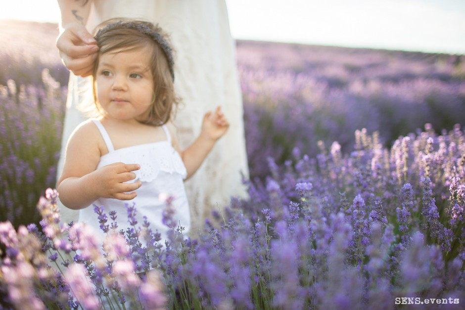 Sens_events_family_Lavender_tenderness_031