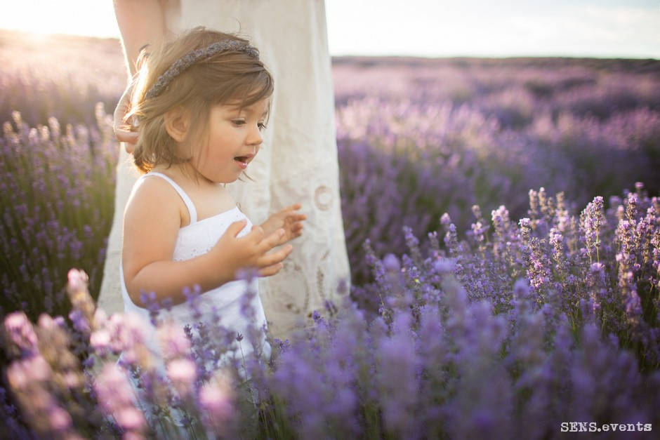Sens_events_family_Lavender_tenderness_032