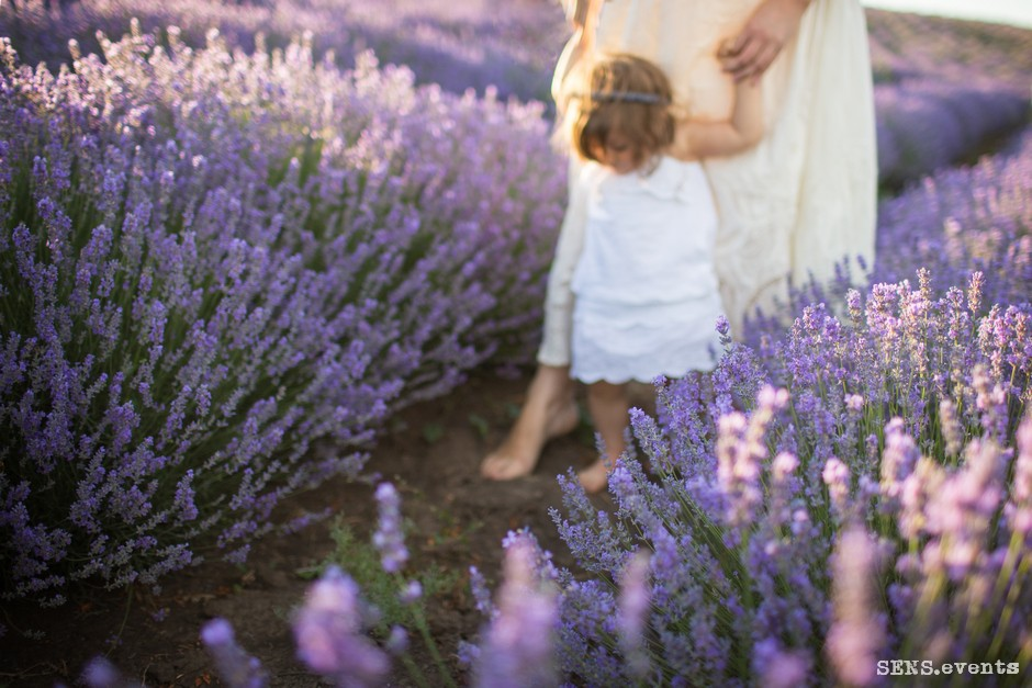 Sens_events_family_Lavender_tenderness_035