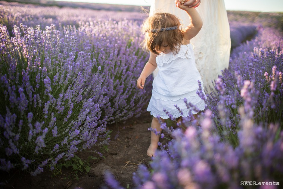 Sens_events_family_Lavender_tenderness_036
