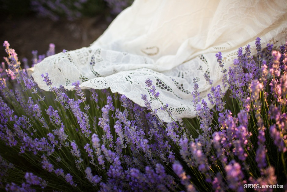 Sens_events_family_Lavender_tenderness_043