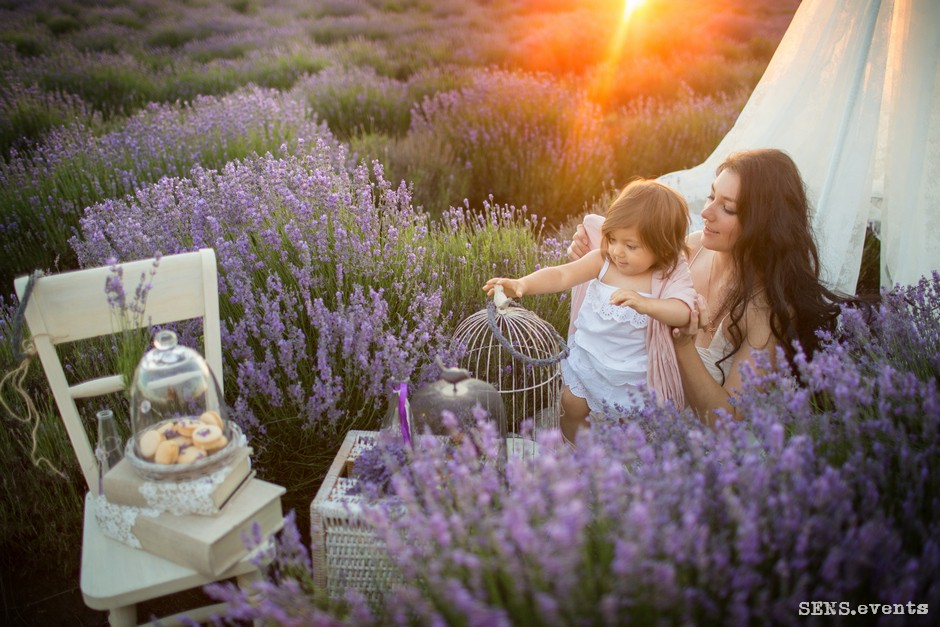 Sens_events_family_Lavender_tenderness_070