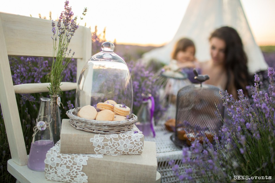 Sens_events_family_Lavender_tenderness_076