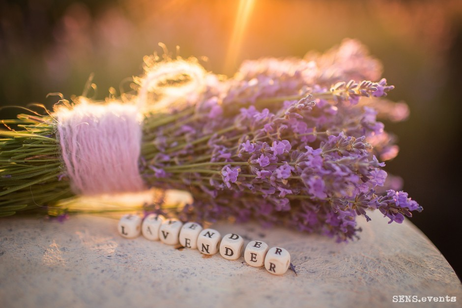 Sens_events_family_Lavender_tenderness_087